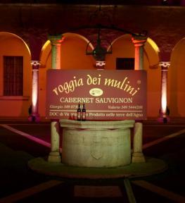 Realizzazione illuminazione artistica Verona con cambio colore