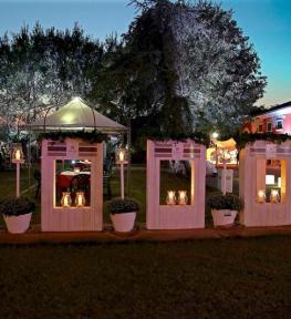 Service luci per festa privata con strutture illuminate